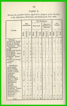 1882 Insanity Report