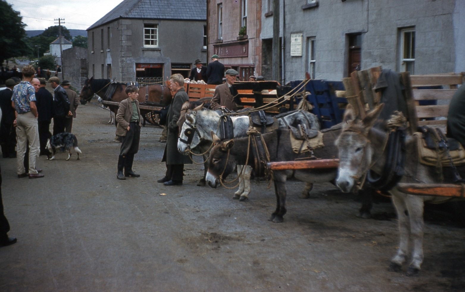 "1961-1975 Special Report : ""Ireland"""