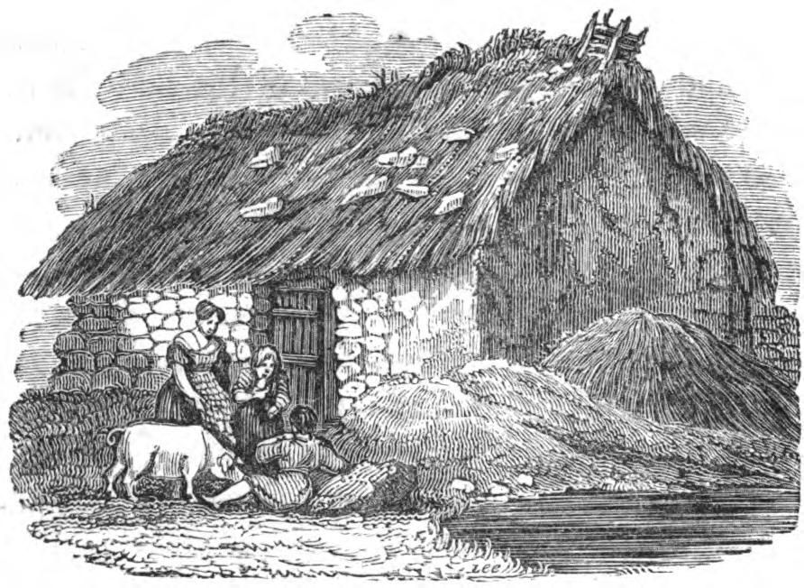 hovel near the foot of the Reek